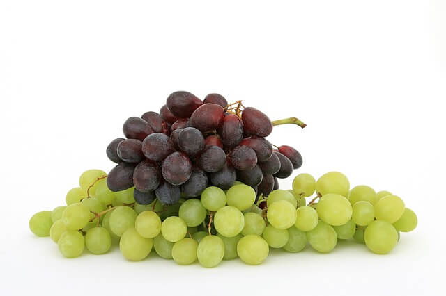 Health Facts about Wine – Can Be Good For You?
